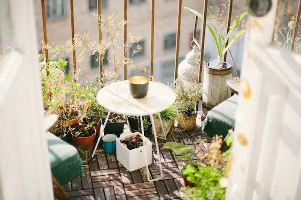 Så inreder du en mysig balkong. Foto: Unsplash