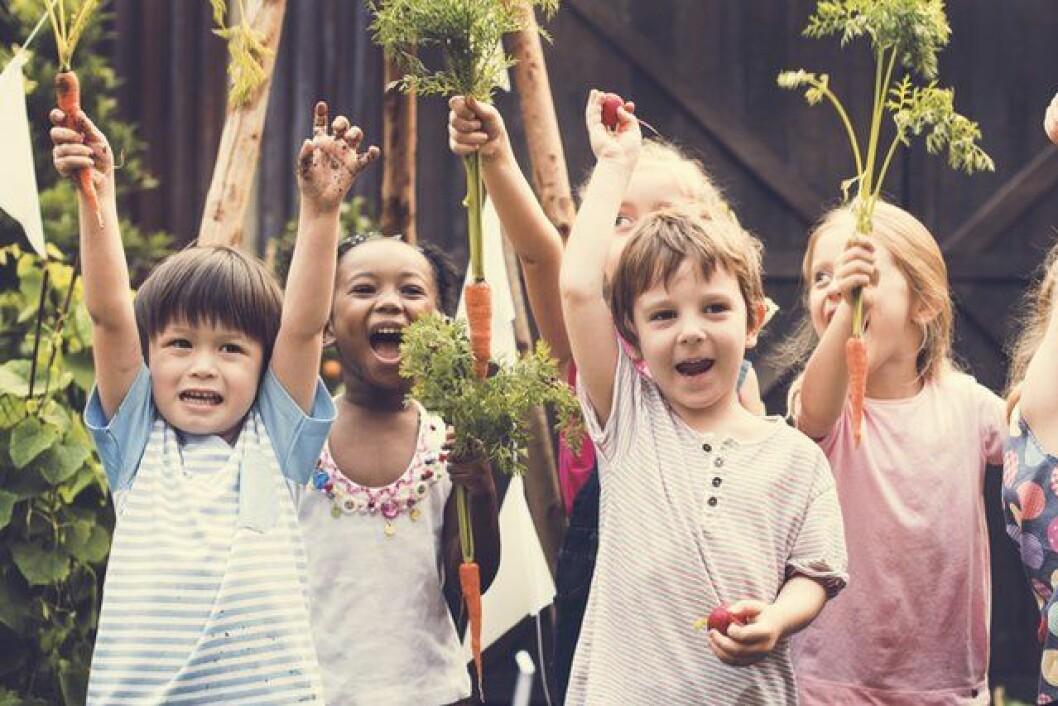 Så får du ditt barn att äta mer grönsaker. Bildkälla: Rawpixel.com/Shutterstock