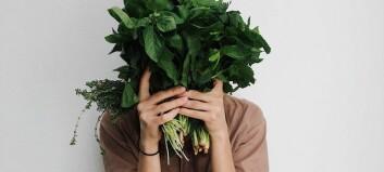 Öka sexlusten med snippsauna – den omtalade  hälsotrenden