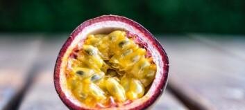 Frukter på P – här är listan till ordjakten