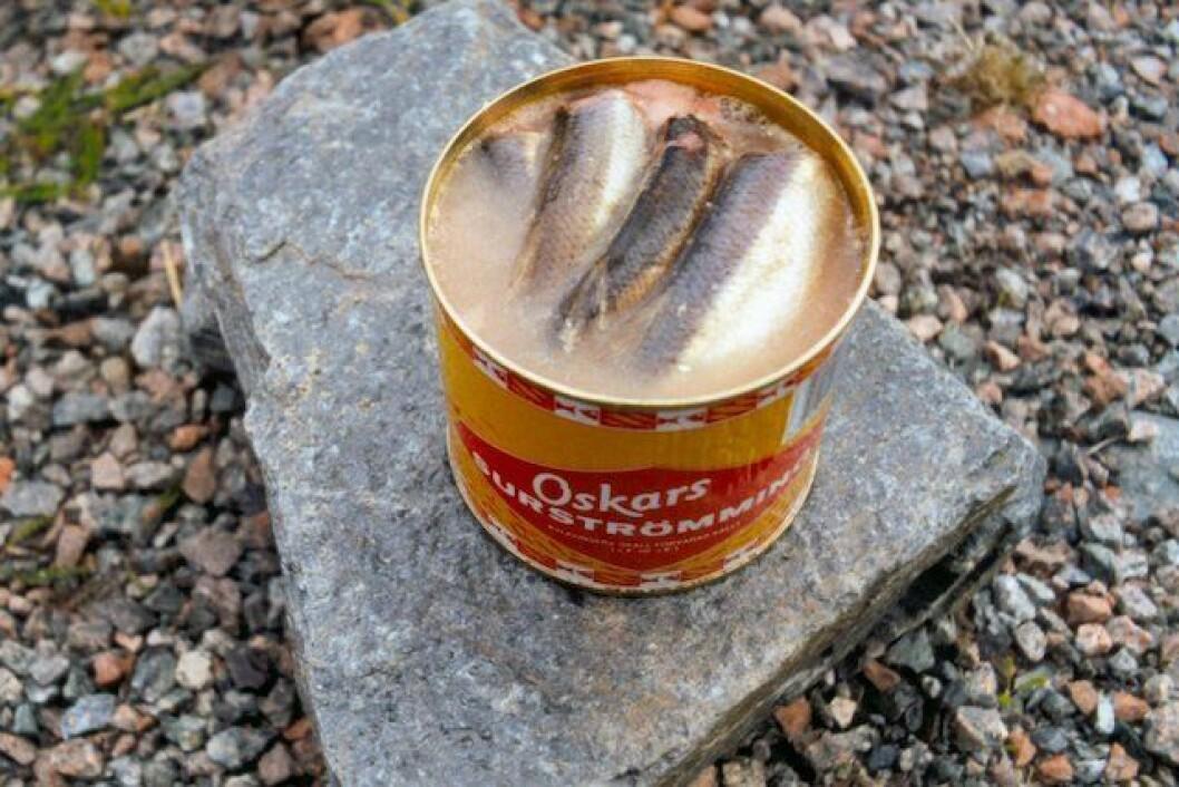 Surströmming innehåller miljögifter. Foto: Lapplaender - Eget arbete, Wikicommons