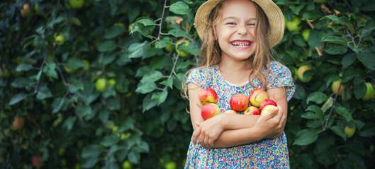 Äppelmelodin: Hela texten